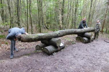 """Herr Blum vom Forstbetriebsbezirk Lügde steht am """"Baumtelefon"""". Wie das funktioniert, machen Marcel (vorn) und Angelo vor: Angelo kratzt leicht am Stamm und Marcel kann es deutlich am anderen Ende hören."""